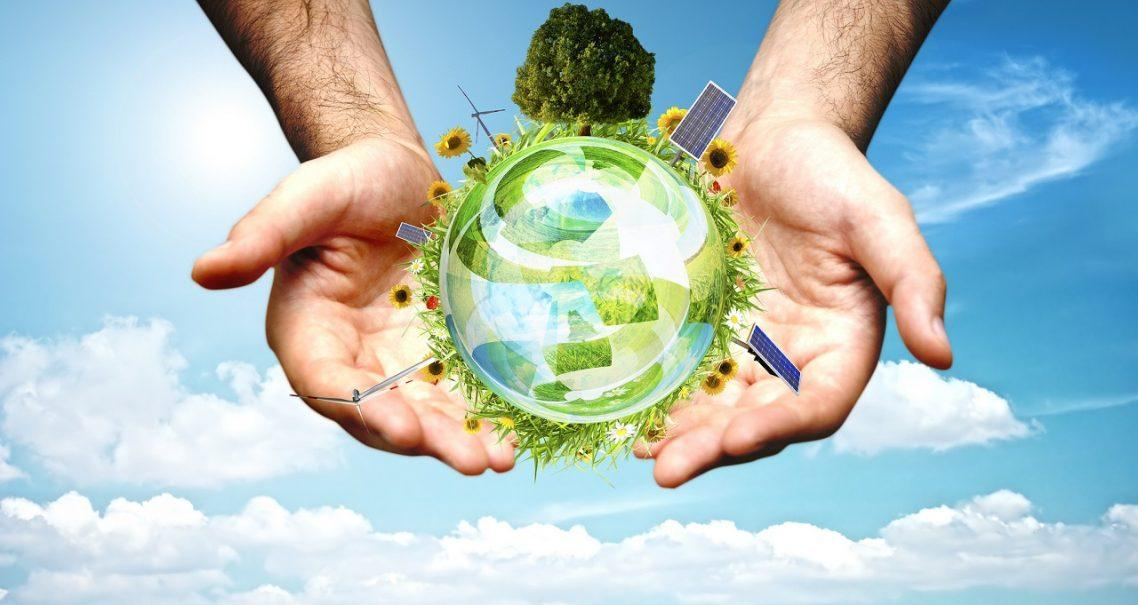 Ecofying Your Business