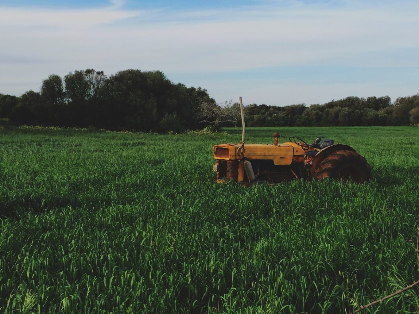 How Apps are Changing the Farming Industry • Feedster