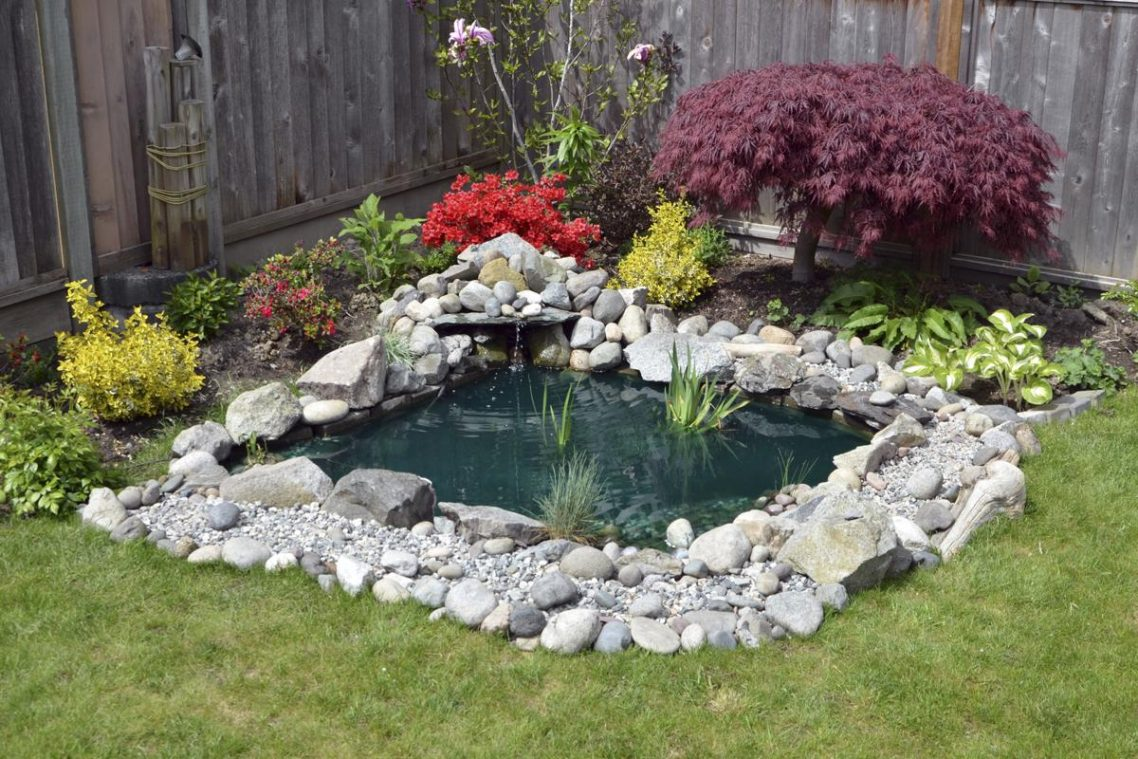 Well Ponds Might Not Be Fun But They Will Surely Make Your Garden Look Better And Can Give It That Paradise Vibe Help You Relax