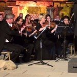 dog-interrupts-concert-vienna-chamber-orchestra-turkey