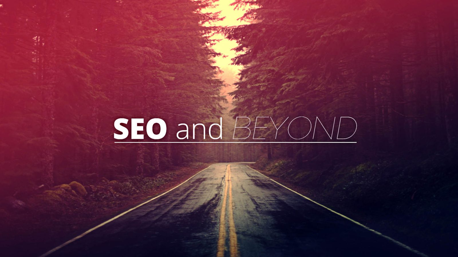 SEO And Beyond…. Why SEO Is Crucial For Your Website