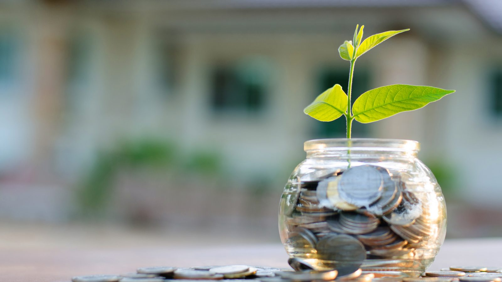 3 Steps You Should Take If You Want to Accumulate Wealth