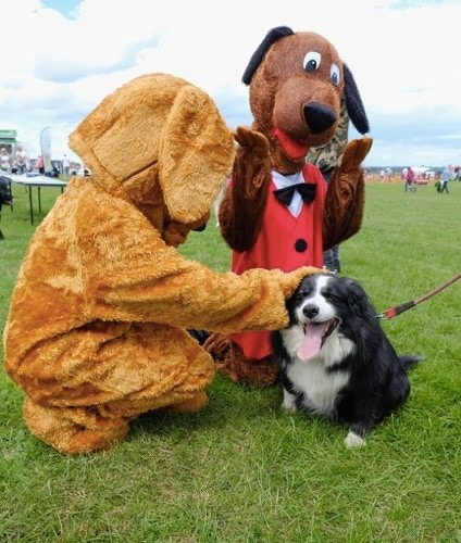 Photos from the Word Record Charity Event are a must see for Dog Lovers!