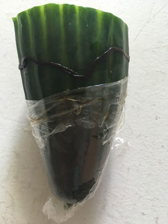 Man Finds Dead Worm In His Cucumber, Tescos Response Is Brilliant