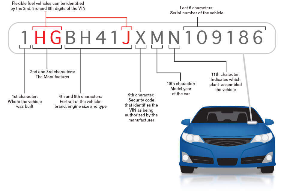 VIN Decoding Reveals How Well You Know Your Vehicle • Feedster