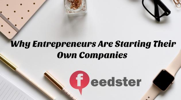 Why Entrepreneurs Are Starting Their Own Companies