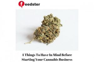 4 Things To Have In Mind Before Starting Your Cannabis Business